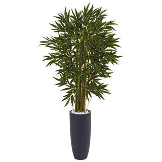 6.5-foot Bamboo Tree in Grey Cylinder Planter
