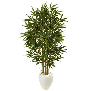 5.5-foot Bamboo Tree in White Oval Planter