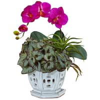 Nearly Natural Mini Phalaenopsis Orchid and Succulent Silk Plant in Planter