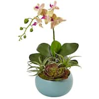 Nearly Natural Phalaenopsis Orchid and Succulents in Decorative Vase