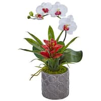 Nearly Natural Mini Phalaenopsis Orchid and Bromeliad in Grey Ceramic Vase