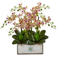 Nearly Natural Phalaenopsis Orchid Arrangement in Decorative Wood Vase