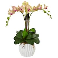 Nearly Natural Phalaenopsis Orchid Arrangement in White Vase