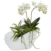 Nearly Natural Succulent and Mini Phalaenopsis in Shell Ceramic