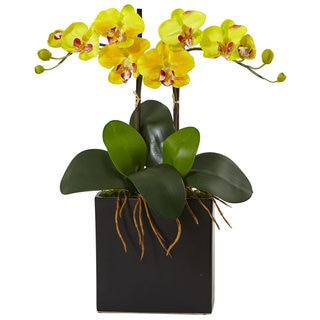 Nearly Natural Mini Double Phalaenopsis Orchid in Black Vase