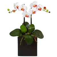 Nearly Natural Silk Artificial Double Mini Phalaenopsis in Black Planter