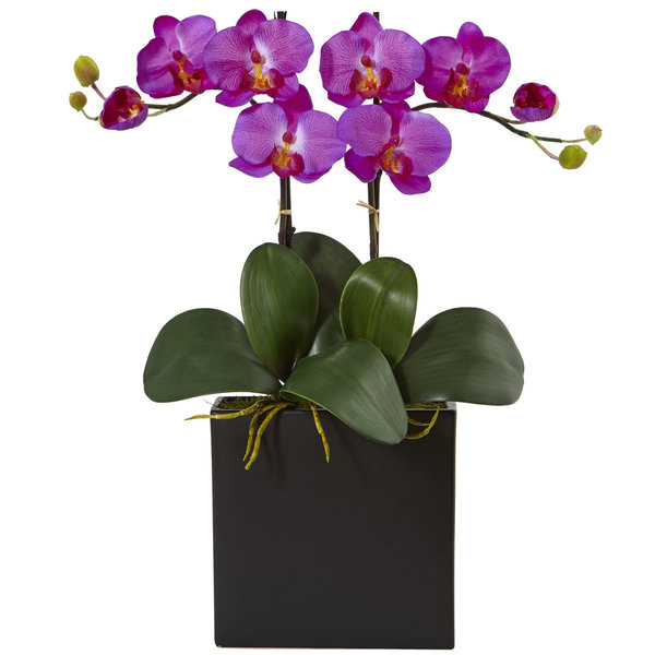 Nearly Natural Silk Artificial Double Mini Phalaenopsis in Black Vase