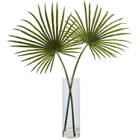 The Curated Nomad Zaius Fan Palm Arrangement