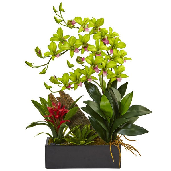 Nearly Natural Dendrobium and Bromeliad Arrangement