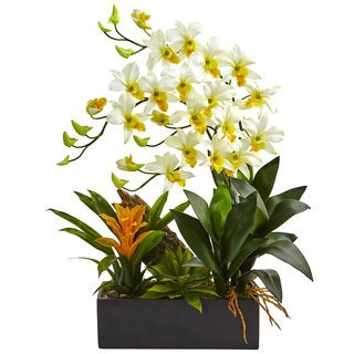 Nearly Natural Silk Artificial Dendrobium and Bromeliad Arrangement in Black Planter