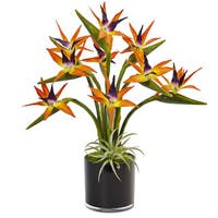 Nearly Natural Bird of Paradise in Black Glossy Cylinder