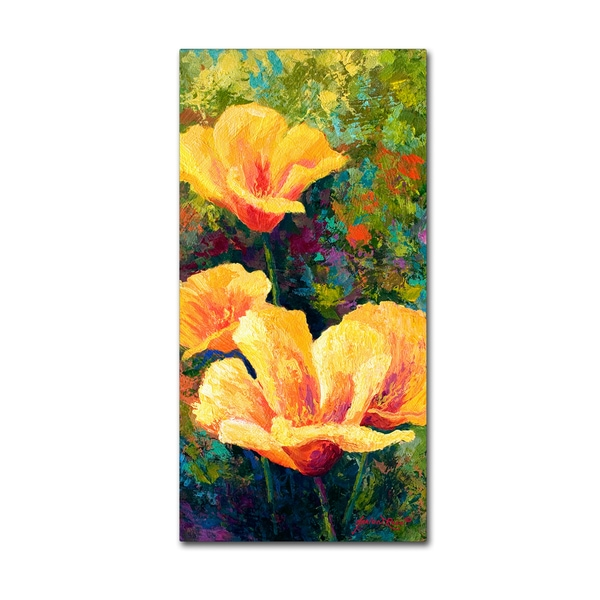 Marion Rose 'Yellow Field Poppies' Canvas Art