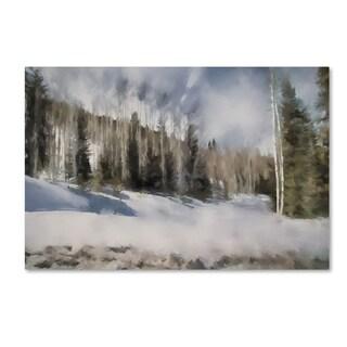 Jai Johnson 'Winter Impressions In Colorado 9' Canvas Art