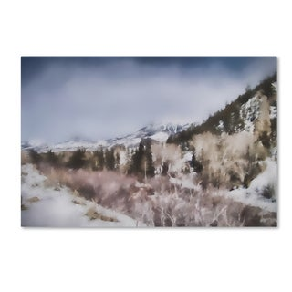 Jai Johnson 'Winter Impressions In Colorado 2' Canvas Art