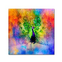Jai Johnson 'Jazzy Peacock' Canvas Art