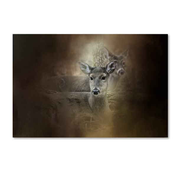 Jai Johnson 'In Our Woods' Canvas Art