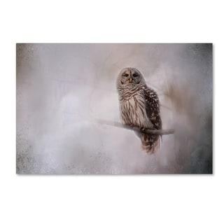 Jai Johnson 'Winter Owl' Canvas Art