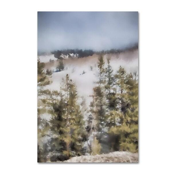 Jai Johnson 'Winter Impressions In Colorado 3' Canvas Art