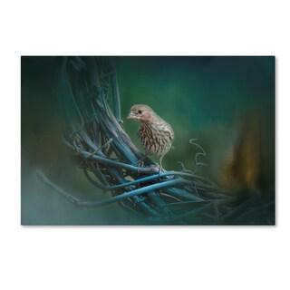 Jai Johnson 'A Little Brown Bird On A Little Blue Wreath' Canvas Art