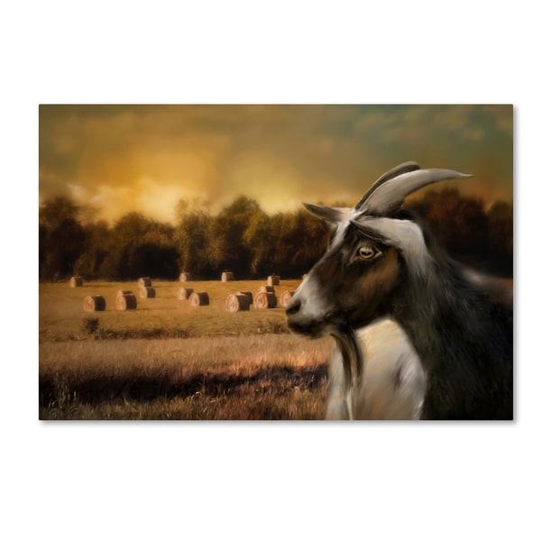 Jai Johnson 'Hay Buffet' Canvas Art