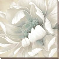 """Winter Blooms II"" Giclee Stretched Canvas Wall Art"