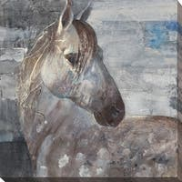 """Appaloosa"" Giclee Stretched Canvas Wall Art"
