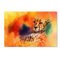 Jai Johnson 'Colorful Expressions Cheetah' Canvas Art