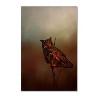 Jai Johnson 'Owl In The Marsh' Canvas Art