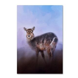 Jai Johnson 'Waterbuck In Winter' Canvas Art