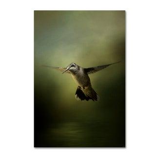 Jai Johnson 'Hummingbird Over Water' Canvas Art