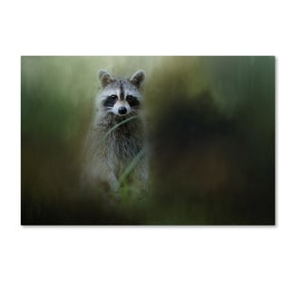 Jai Johnson 'Little Bandit' Canvas Art