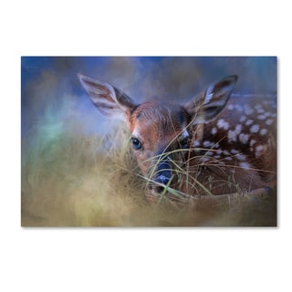 Jai Johnson 'The First Fawn' Canvas Art