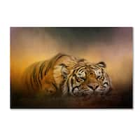 Jai Johnson 'The Tiger Awakens' Canvas Art