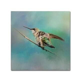 Jai Johnson 'Hummingbird On Mint' Canvas Art