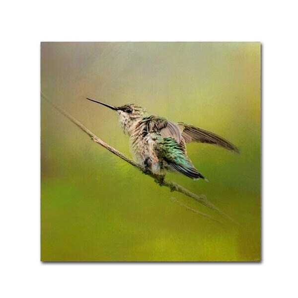 Jai Johnson 'Hummingbird On Lime' Canvas Art