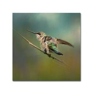 Jai Johnson 'Hummingbird In Spring Storm' Canvas Art