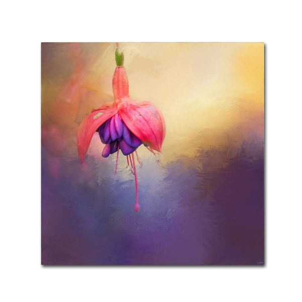 Jai Johnson 'Fuchsia Drop' Canvas Art