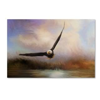 Jai Johnson 'Eagle In The Marsh' Canvas Art