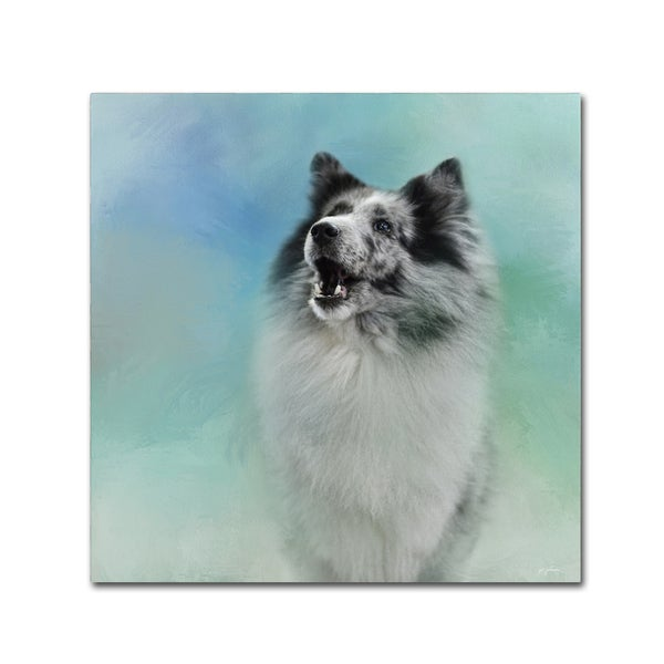 Jai Johnson 'Something To Say Sheltie' Canvas Art
