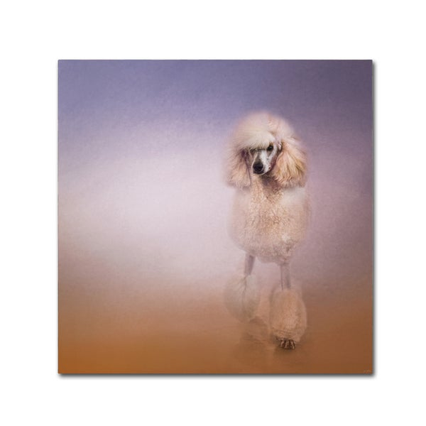 Jai Johnson 'On The Way To The Salon Standard Poodle' Canvas Art