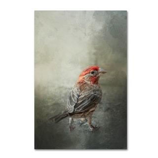 Jai Johnson 'Little Red After The Storm' Canvas Art