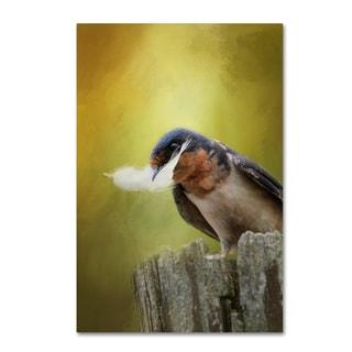 Jai Johnson 'A Feather For Her Nest' Canvas Art