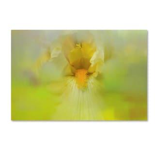 Jai Johnson 'Iris In Lime' Canvas Art