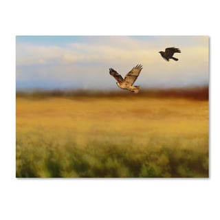 Jai Johnson 'Hawk On The Run' Canvas Art