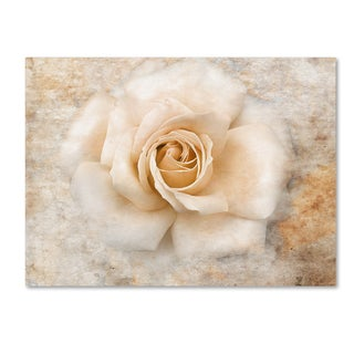 Jai Johnson 'Vintage Rose 5' Canvas Art