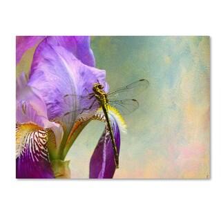 Jai Johnson 'Say Hello To Spring' Canvas Art