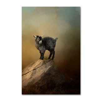 Jai Johnson 'Little Rock Climber' Canvas Art