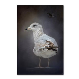Jai Johnson 'Perched Nearby Gull' Canvas Art