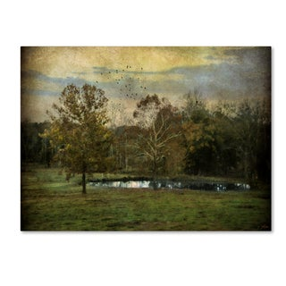 Jai Johnson 'Quiet At The Pond' Canvas Art