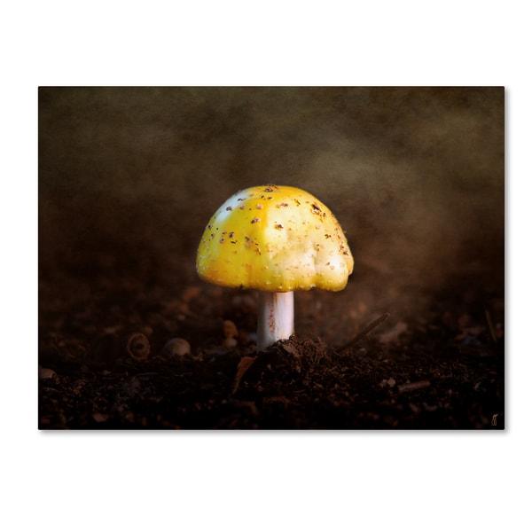 Jai Johnson 'Little Yellow Mushroom' Canvas Art